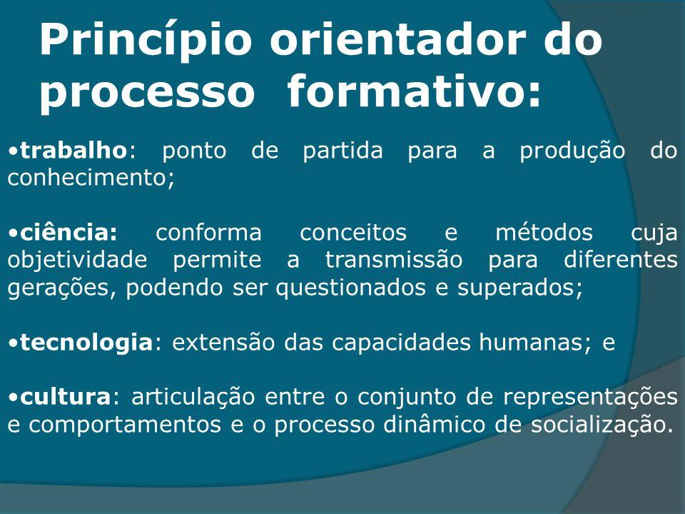Princípio orientador do processo formativo: