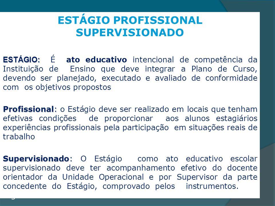ESTÁGIO PROFISSIONAL SUPERVISIONADO