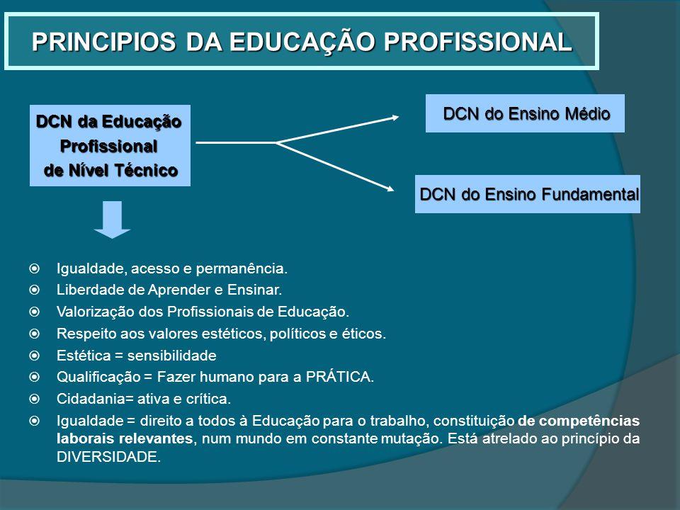 PRINCIPIOS DA EDUCAÇÃO PROFISSIONAL