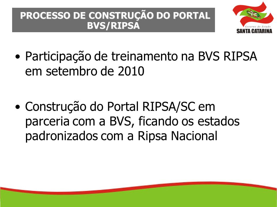 PROCESSO DE CONSTRUÇÃO DO PORTAL BVS/RIPSA