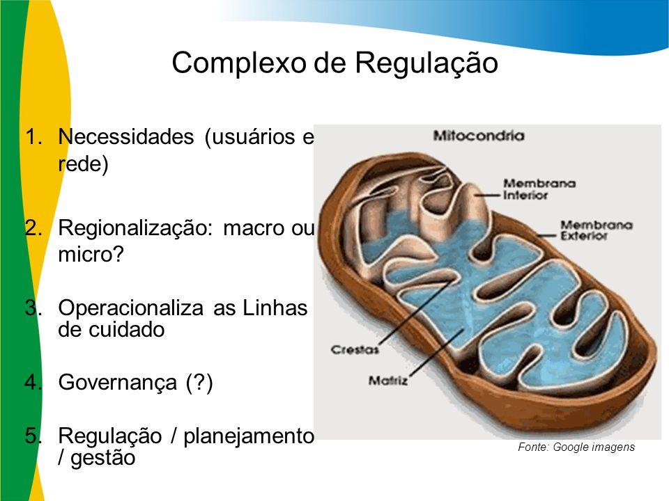 Complexo de Regulação Necessidades (usuários e rede)