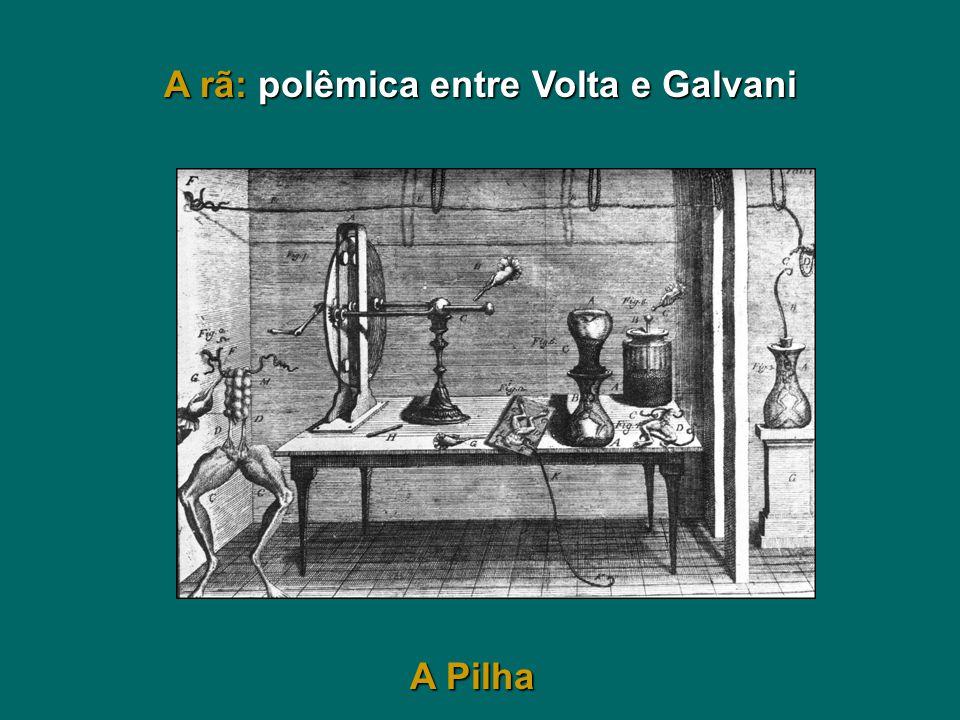 A rã: polêmica entre Volta e Galvani