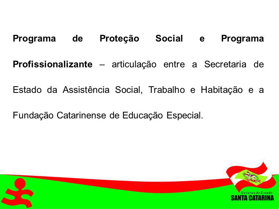 Programa de Proteção Social e Programa Profissionalizante – articulação entre a Secretaria de Estado da Assistência Social, Trabalho e Habitação e a Fundação Catarinense de Educação Especial.