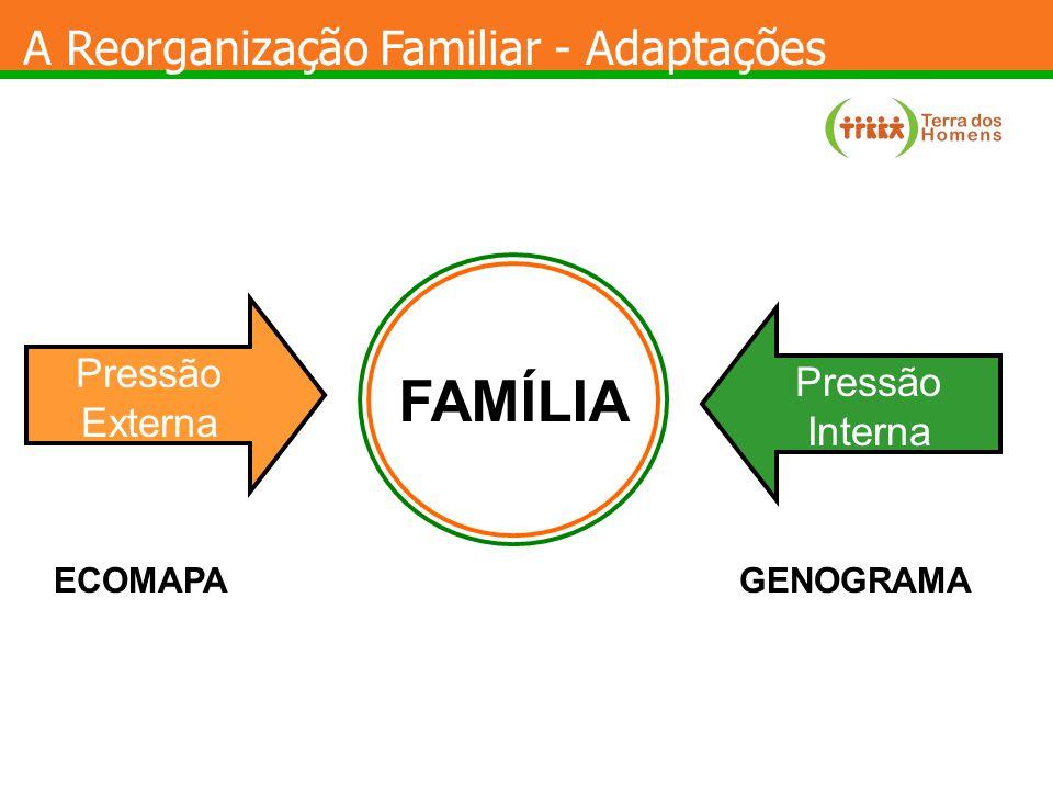 FAMÍLIA A Reorganização Familiar - Adaptações PressãoExterna