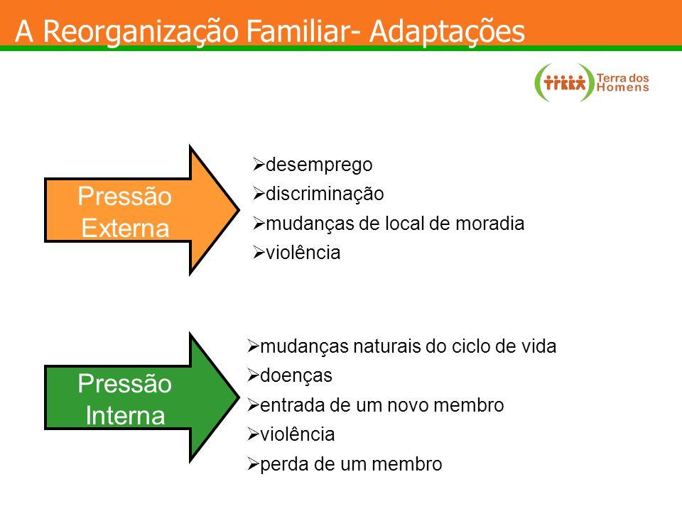 A Reorganização Familiar- Adaptações