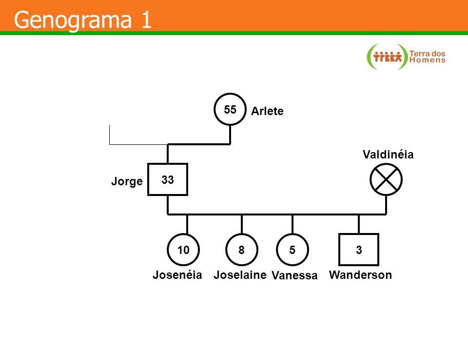 Genograma 1 55 Arlete Valdinéia 33 Jorge 10 8 5 3 Josenéia Joselaine