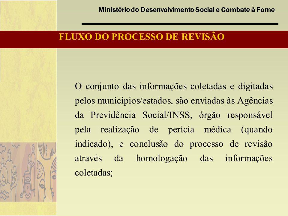 FLUXO DO PROCESSO DE REVISÃO