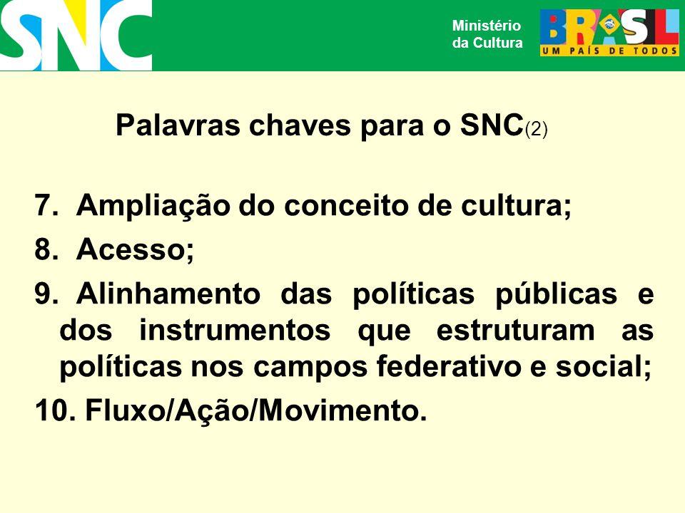 Palavras chaves para o SNC(2)