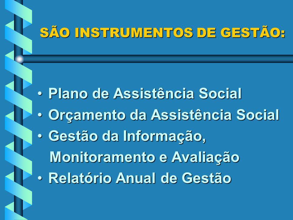 SÃO INSTRUMENTOS DE GESTÃO: