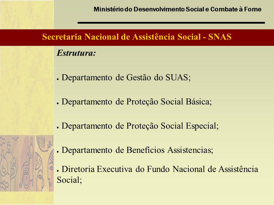 Secretaria Nacional de Assistência Social - SNAS