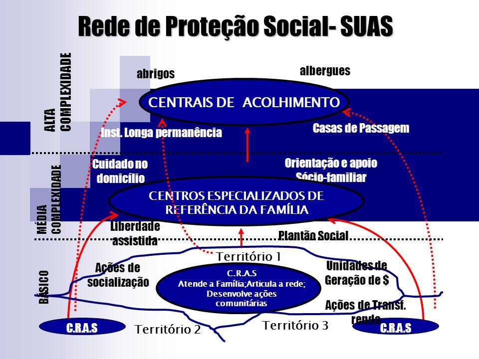Rede de Proteção Social- SUAS