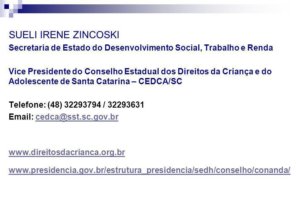 SUELI IRENE ZINCOSKI Secretaria de Estado do Desenvolvimento Social, Trabalho e Renda.