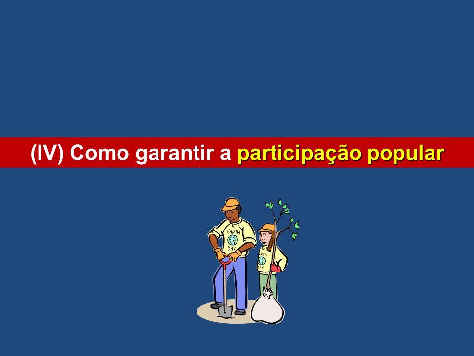 (IV) Como garantir a participação popular