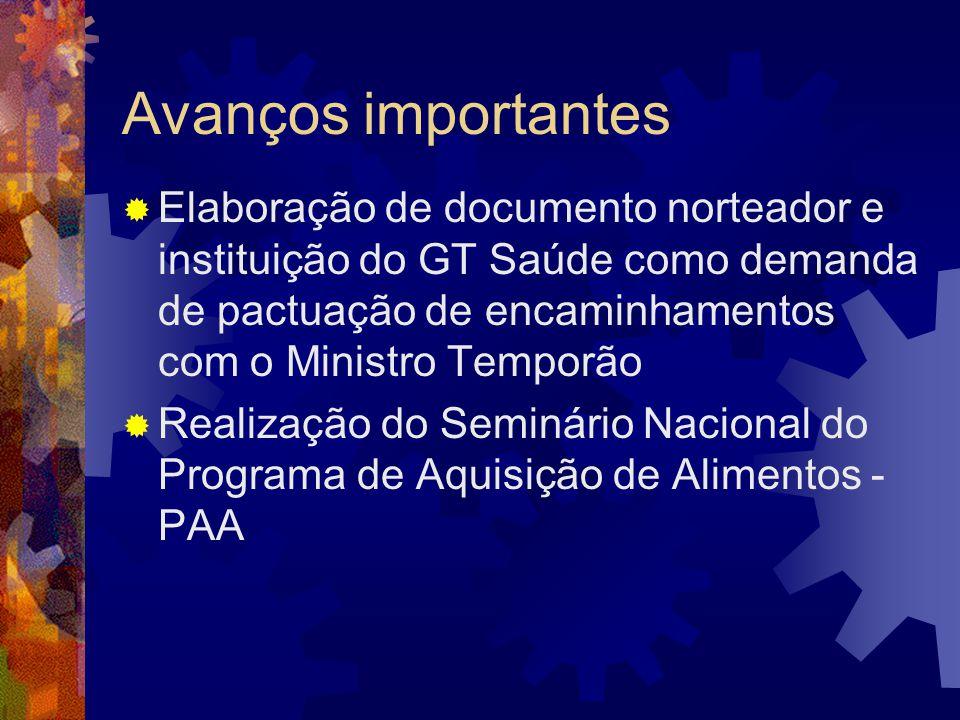 Avanços importantes Elaboração de documento norteador e instituição do GT Saúde como demanda de pactuação de encaminhamentos com o Ministro Temporão.