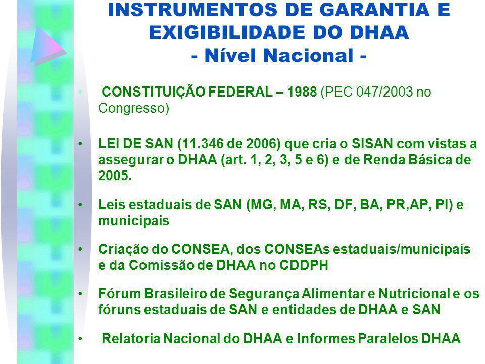 INSTRUMENTOS DE GARANTIA E EXIGIBILIDADE DO DHAA - Nível Nacional -