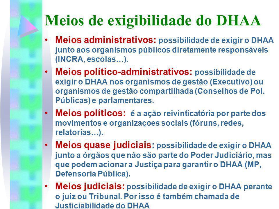 Meios de exigibilidade do DHAA