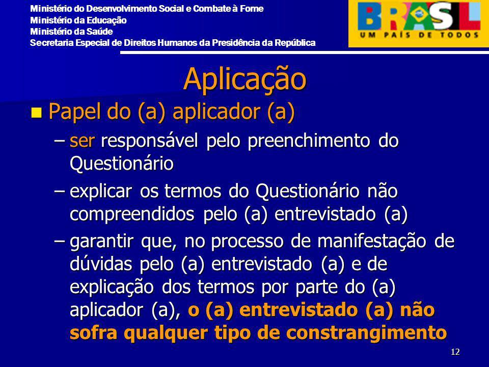 Aplicação Papel do (a) aplicador (a)