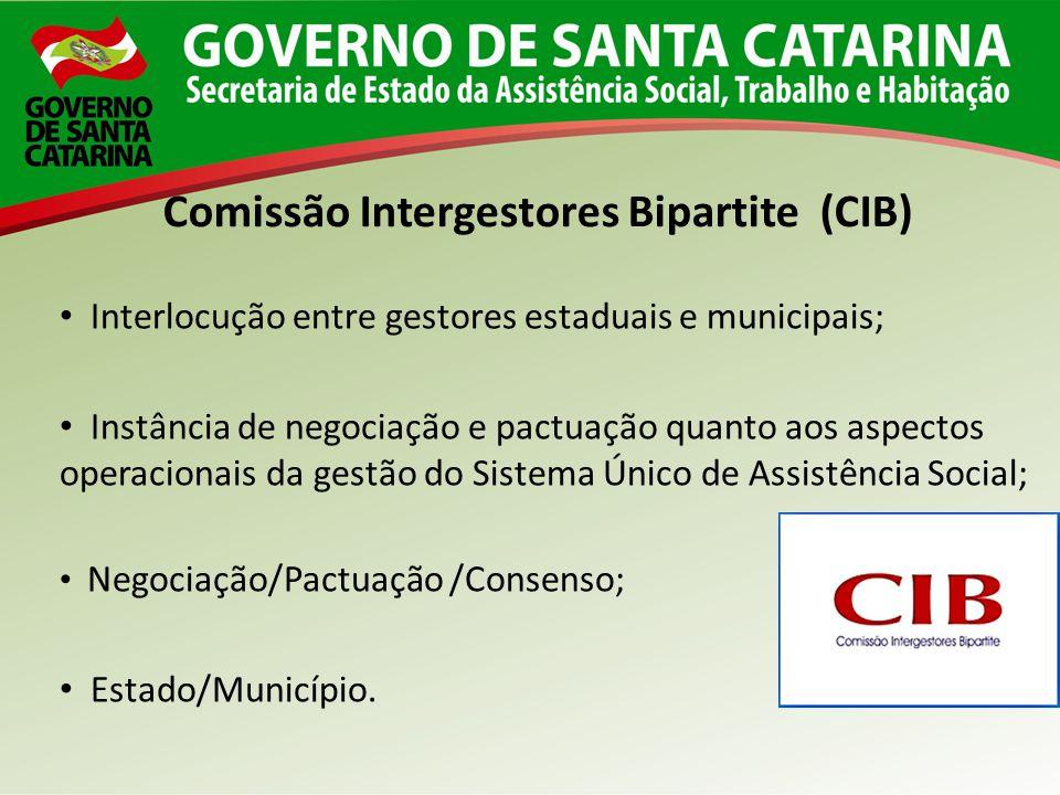 Comissão Intergestores Bipartite (CIB)