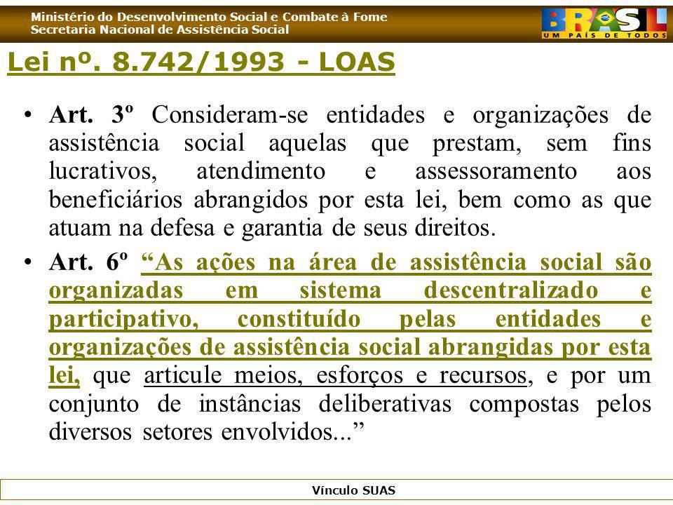 Lei nº. 8.742/1993 - LOAS