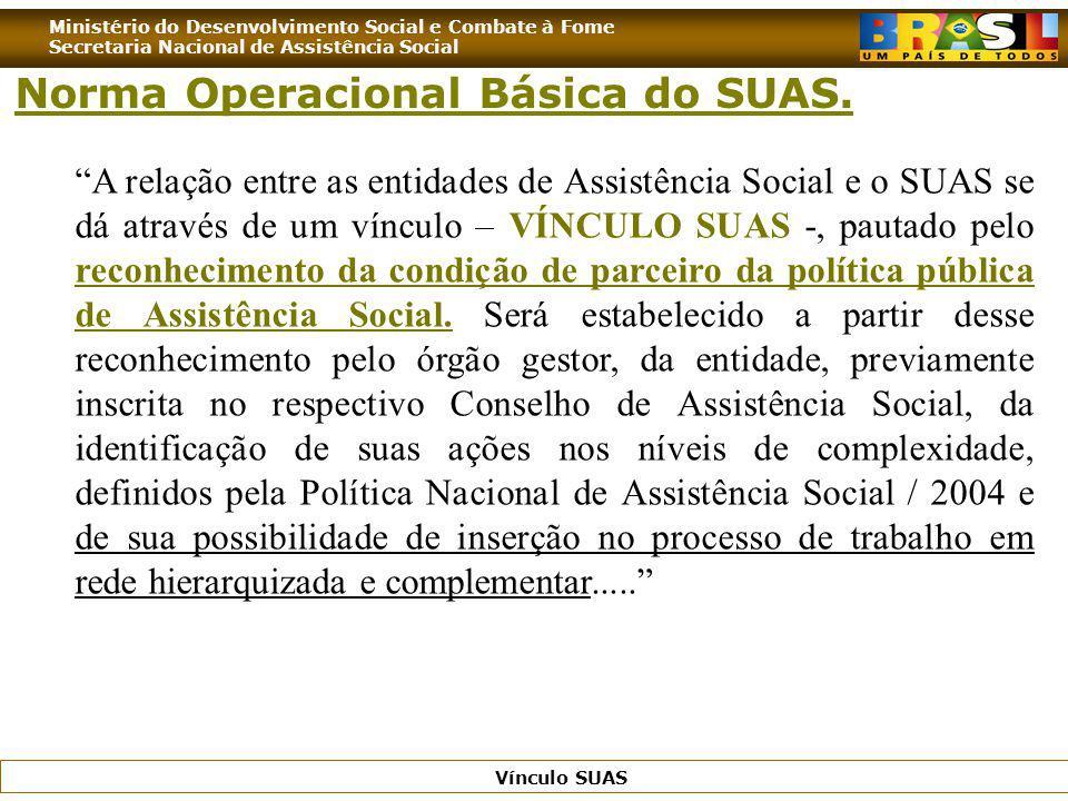 Norma Operacional Básica do SUAS.