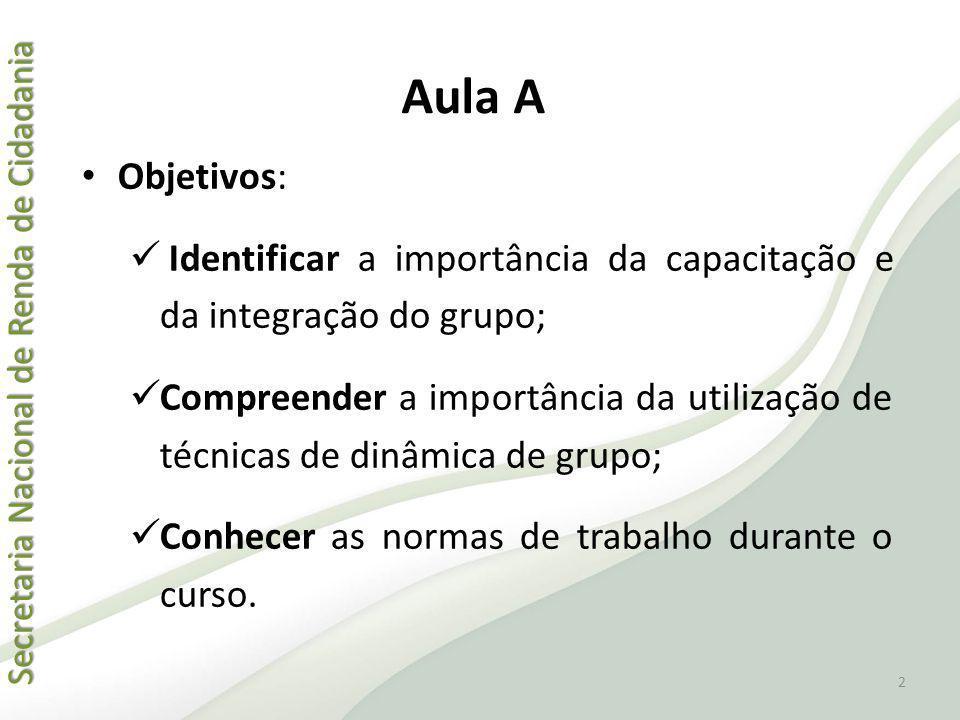 Aula A Objetivos: Identificar a importância da capacitação e da integração do grupo;