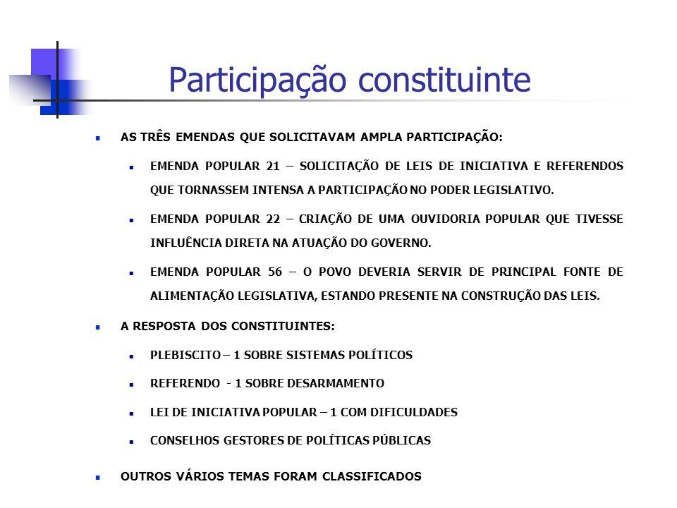 Participação constituinte
