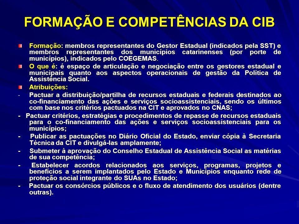 FORMAÇÃO E COMPETÊNCIAS DA CIB