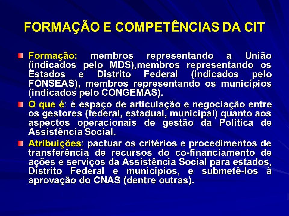 FORMAÇÃO E COMPETÊNCIAS DA CIT