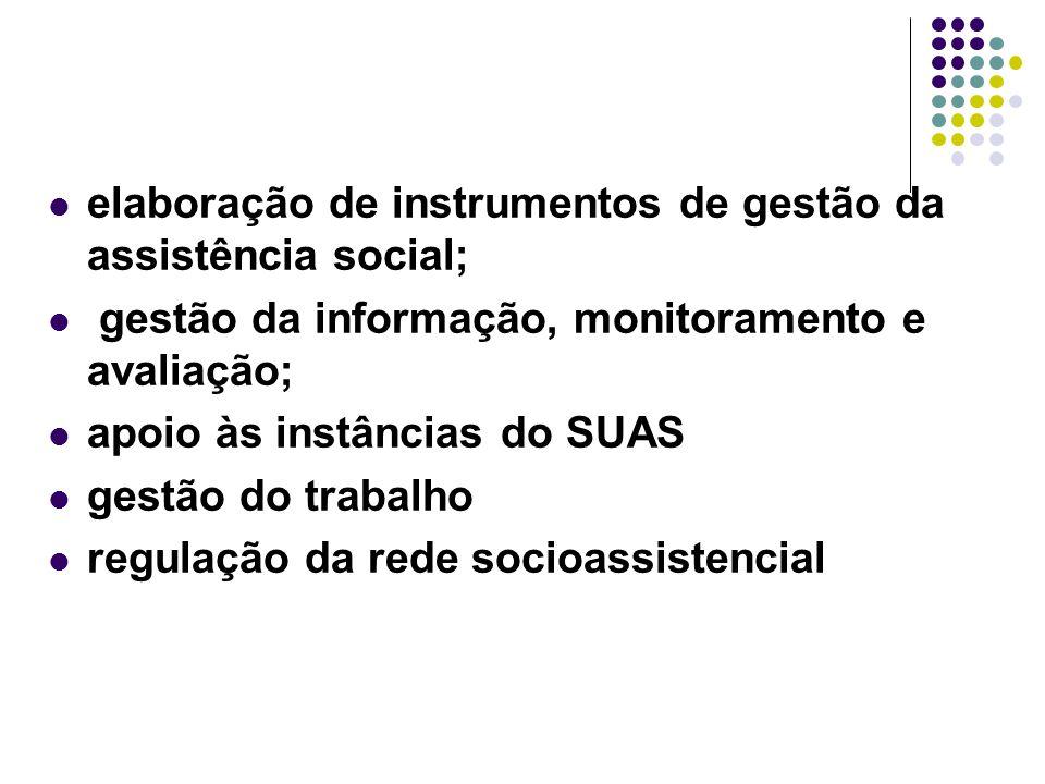 elaboração de instrumentos de gestão da assistência social;