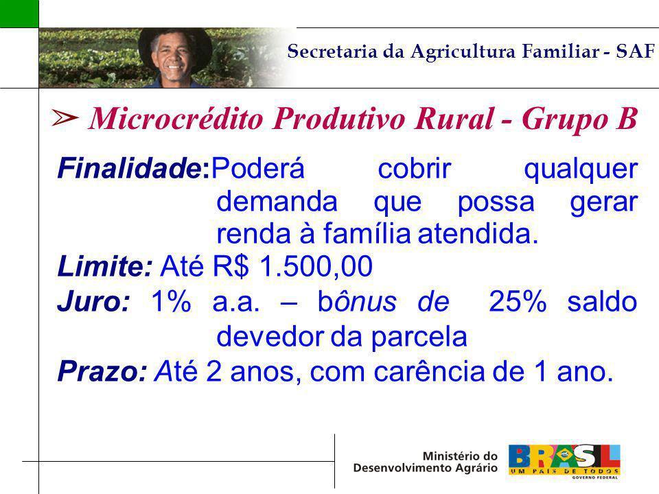 Microcrédito Produtivo Rural - Grupo B