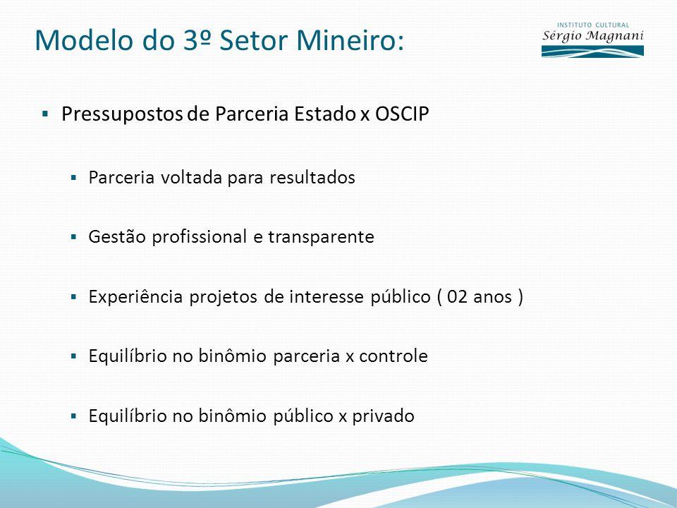 Modelo do 3º Setor Mineiro: