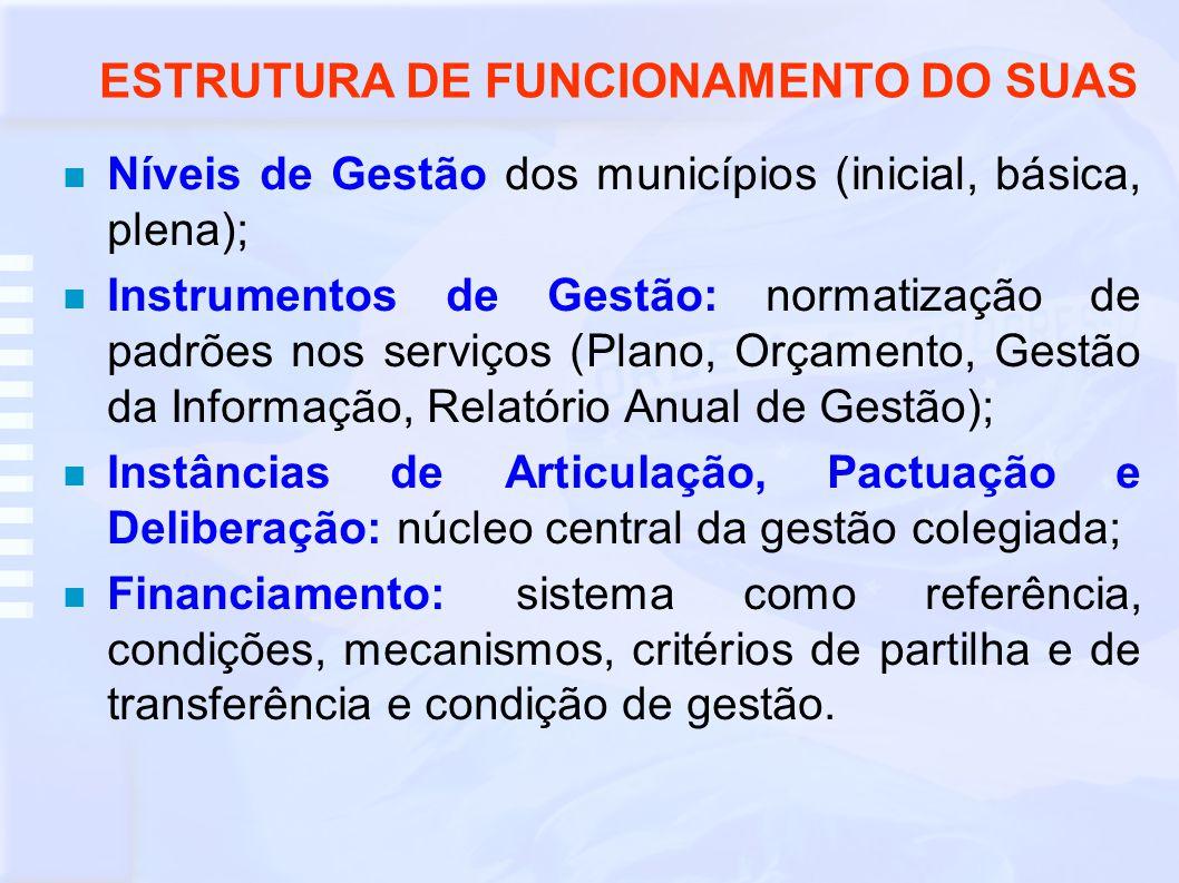 ESTRUTURA DE FUNCIONAMENTO DO SUAS