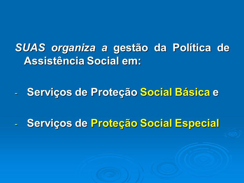 SUAS organiza a gestão da Política de Assistência Social em: