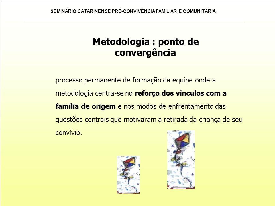 Metodologia : ponto de convergência