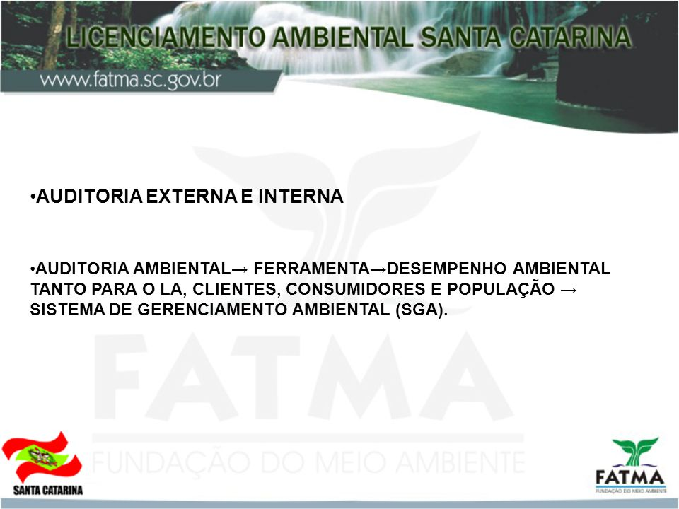 AUDITORIA EXTERNA E INTERNA