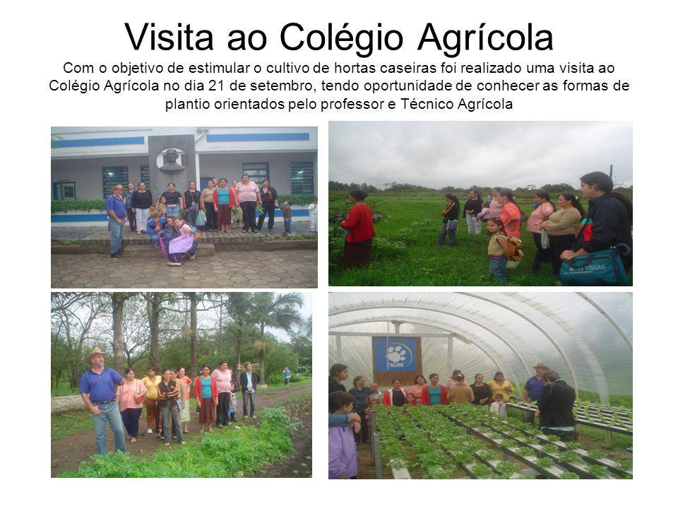 Visita ao Colégio Agrícola Com o objetivo de estimular o cultivo de hortas caseiras foi realizado uma visita ao Colégio Agrícola no dia 21 de setembro, tendo oportunidade de conhecer as formas de plantio orientados pelo professor e Técnico Agrícola