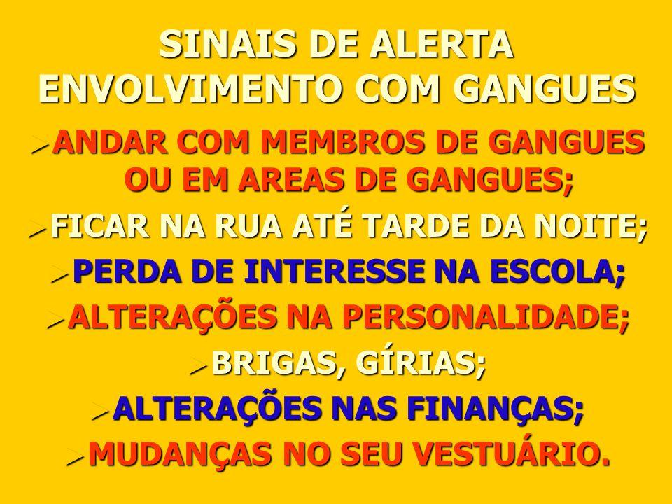 SINAIS DE ALERTA ENVOLVIMENTO COM GANGUES