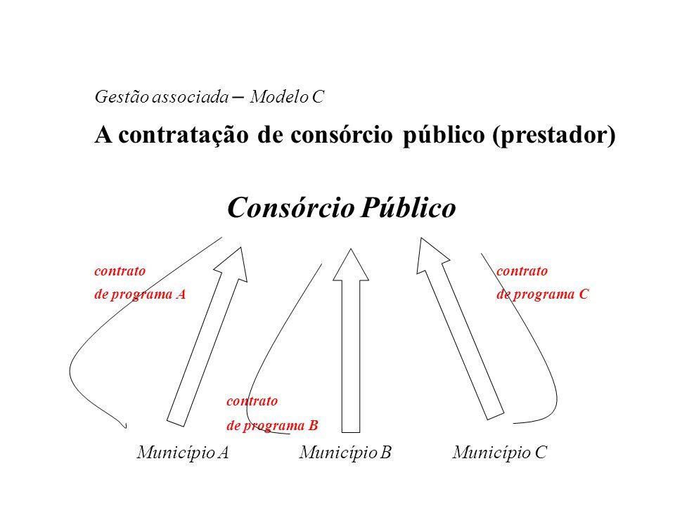A contratação de consórcio público (prestador)