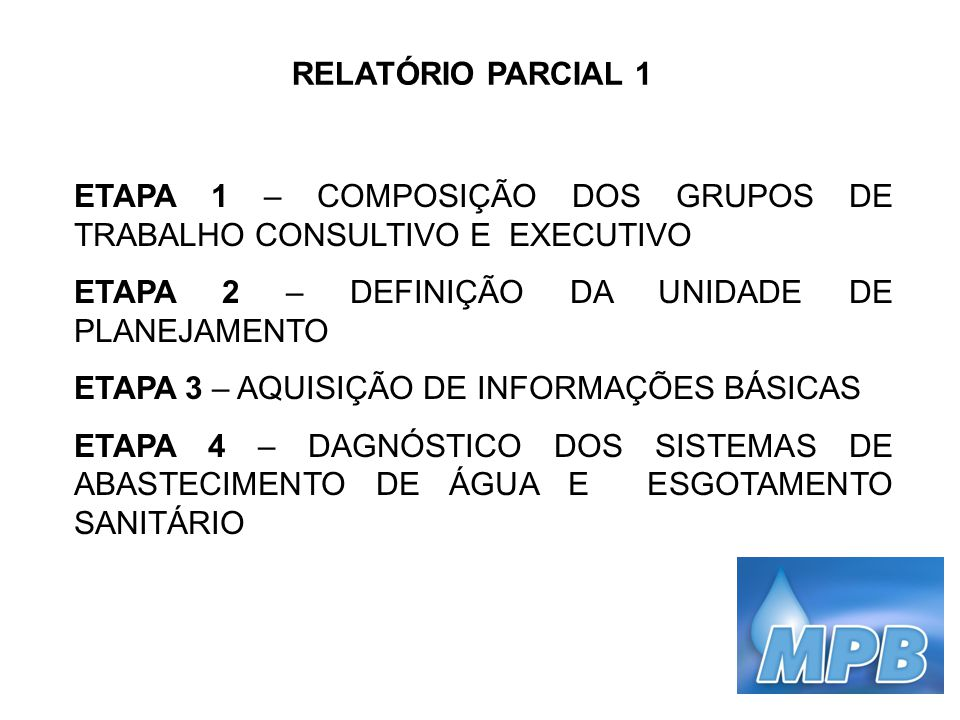 RELATÓRIO PARCIAL 1 ETAPA 1 – COMPOSIÇÃO DOS GRUPOS DE TRABALHO CONSULTIVO E EXECUTIVO. ETAPA 2 – DEFINIÇÃO DA UNIDADE DE PLANEJAMENTO.