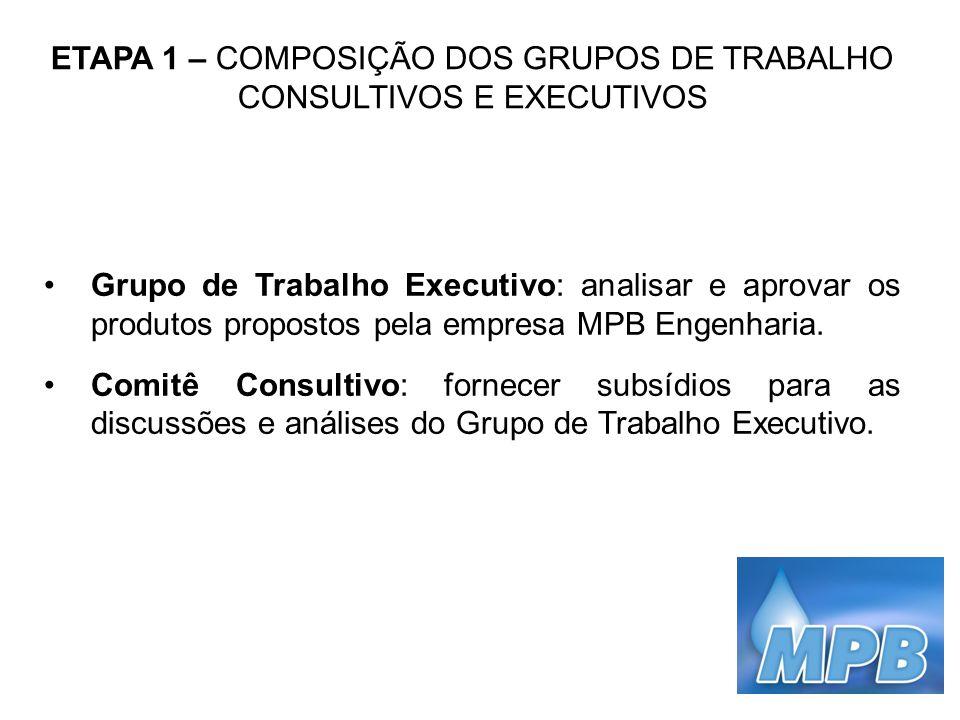 ETAPA 1 – COMPOSIÇÃO DOS GRUPOS DE TRABALHO CONSULTIVOS E EXECUTIVOS