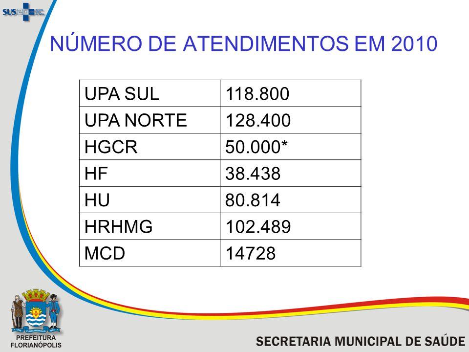 NÚMERO DE ATENDIMENTOS EM 2010