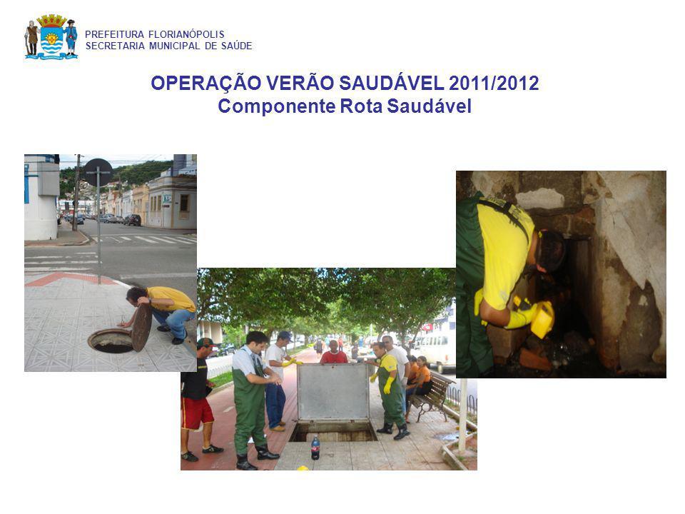 OPERAÇÃO VERÃO SAUDÁVEL 2011/2012 Componente Rota Saudável