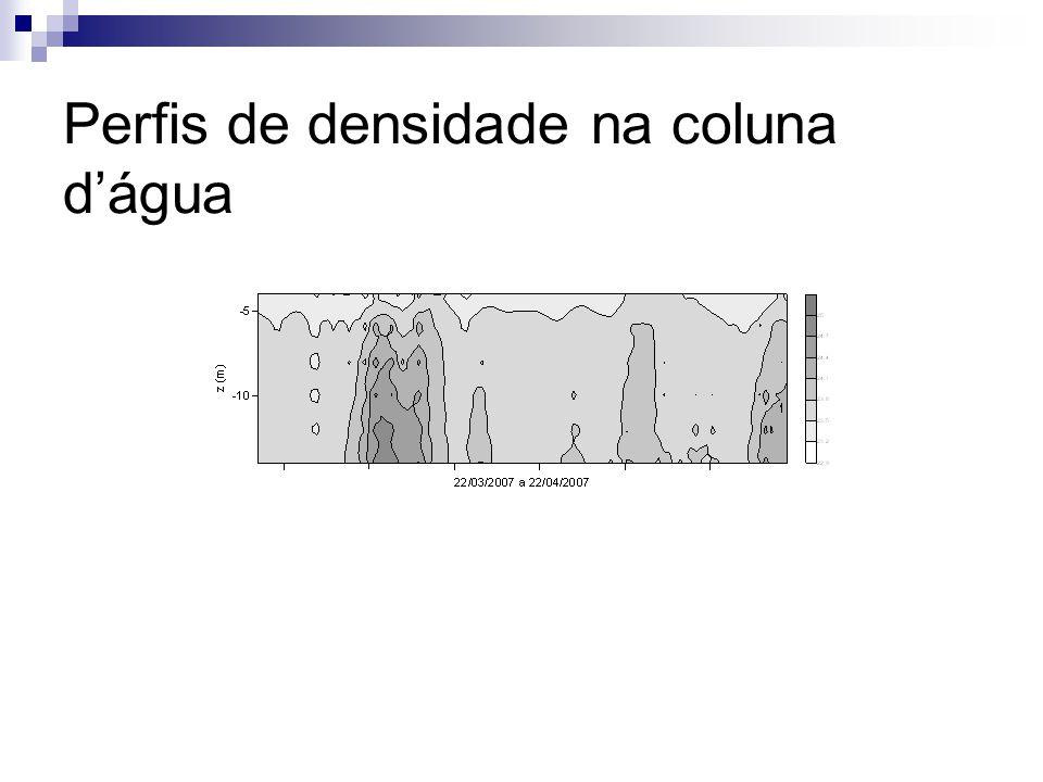 Perfis de densidade na coluna d'água