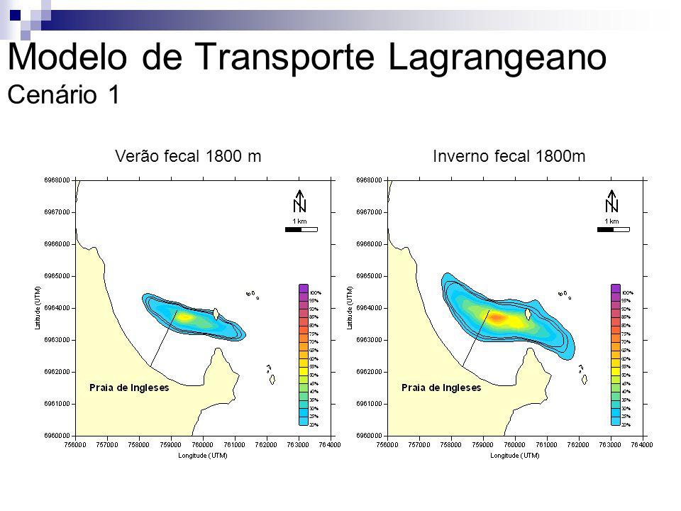 Modelo de Transporte Lagrangeano Cenário 1