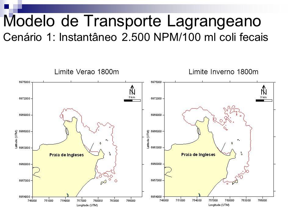 Modelo de Transporte Lagrangeano Cenário 1: Instantâneo 2