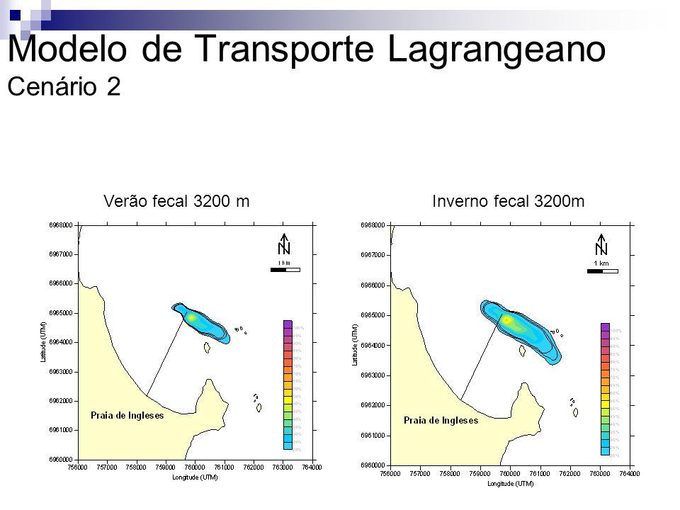 Modelo de Transporte Lagrangeano Cenário 2