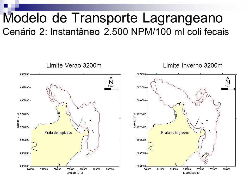 Modelo de Transporte Lagrangeano Cenário 2: Instantâneo 2