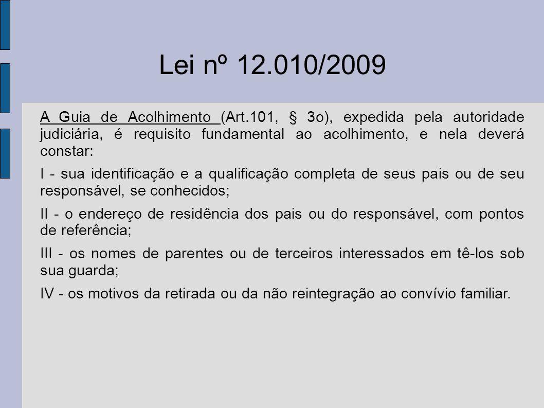 Lei nº 12.010/2009