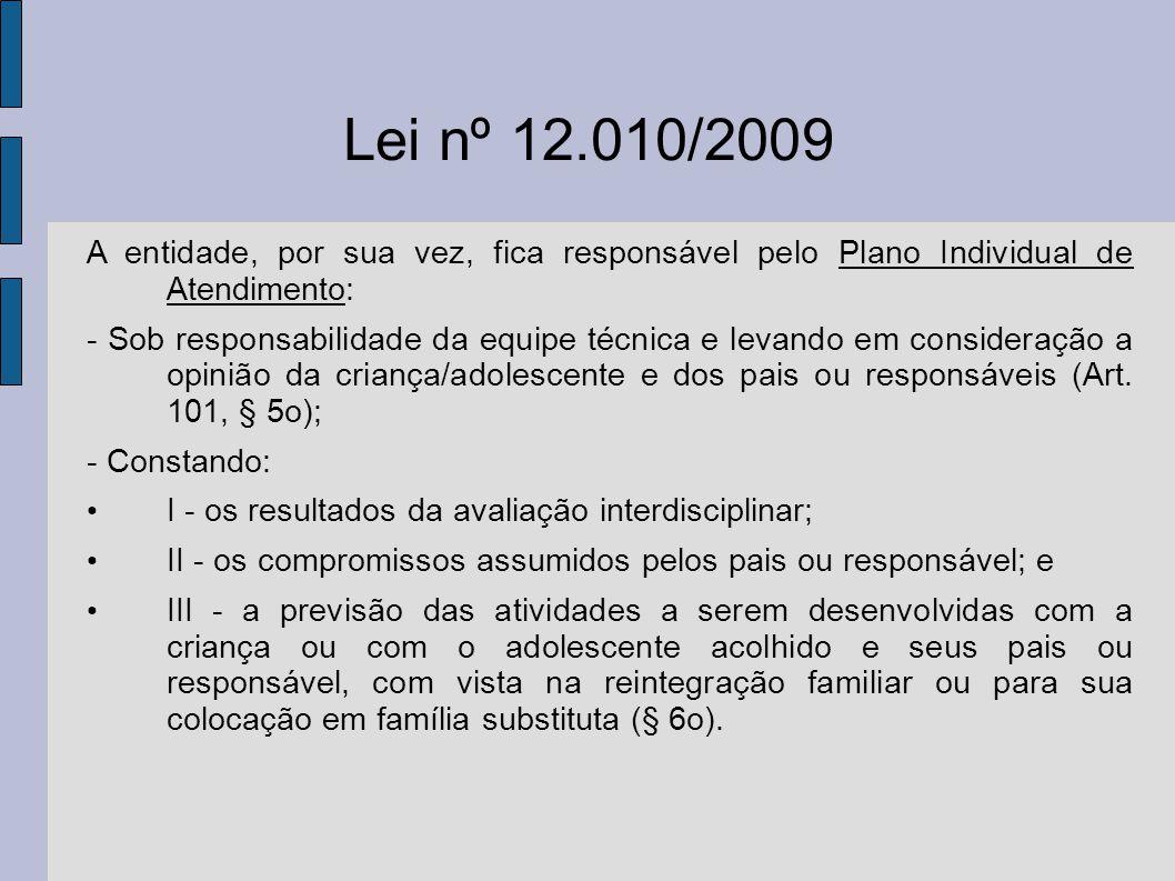 Lei nº 12.010/2009 A entidade, por sua vez, fica responsável pelo Plano Individual de Atendimento: