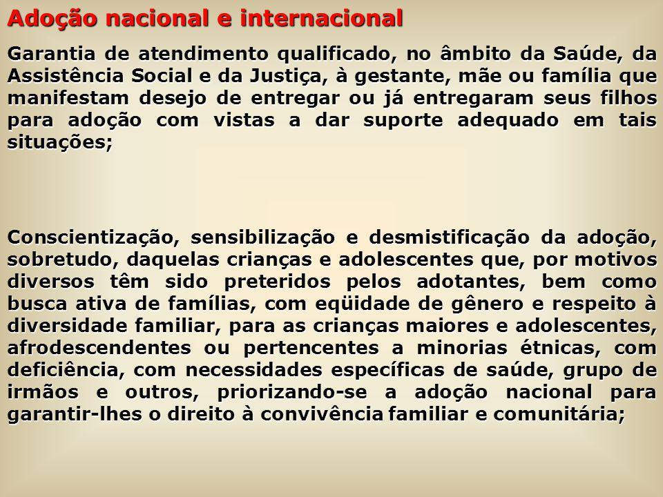 Adoção nacional e internacional